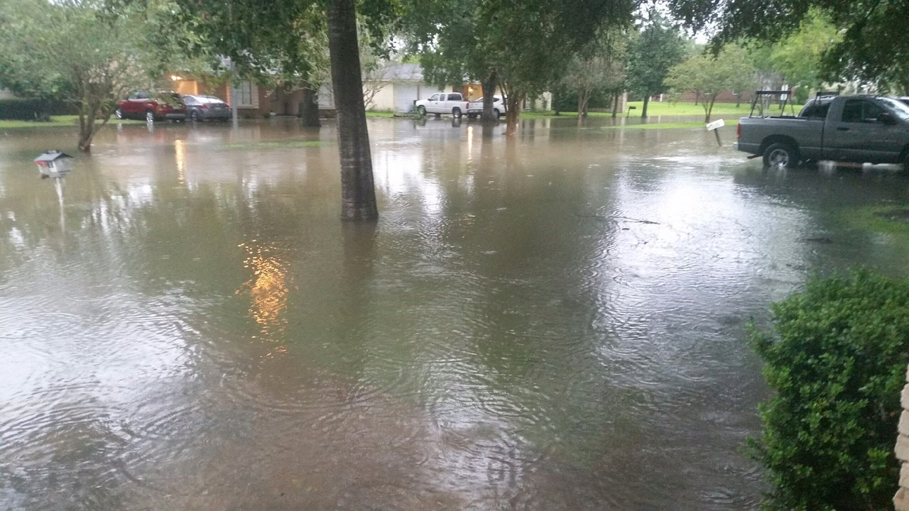 Michelle Carpenter shows the flooding in her neighborhood from Hurricane Harvey.